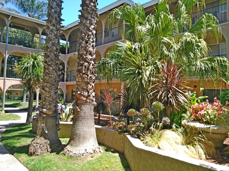 Casa Victoria Apartments Is An Enclosed, Gated Community. We Have Winding  Walkways That Lead You Through The Entire Property. Our Community Has An  Swimming ...